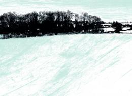 Delphine Jones - Mid Devon Fields in Winter